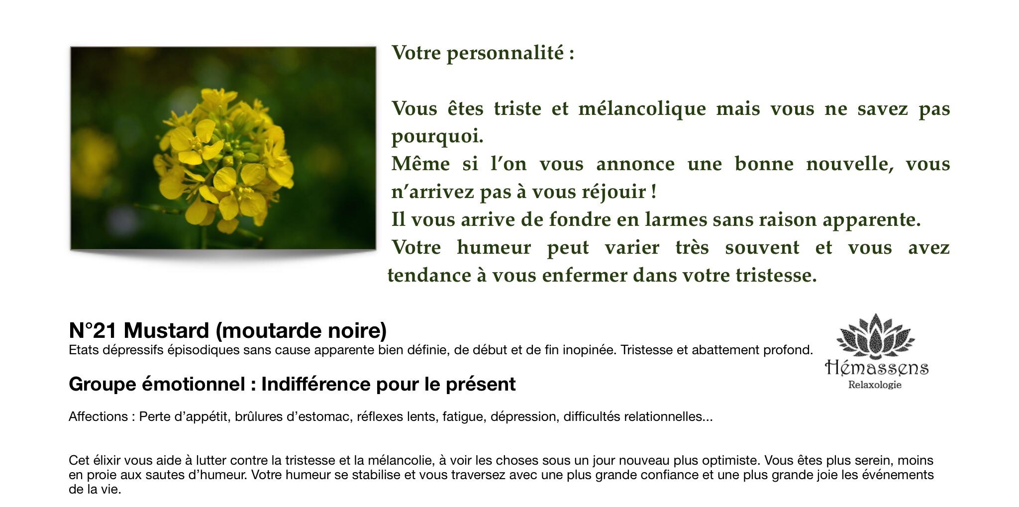 Mustard Fleur de Bach Hémassens Fameck