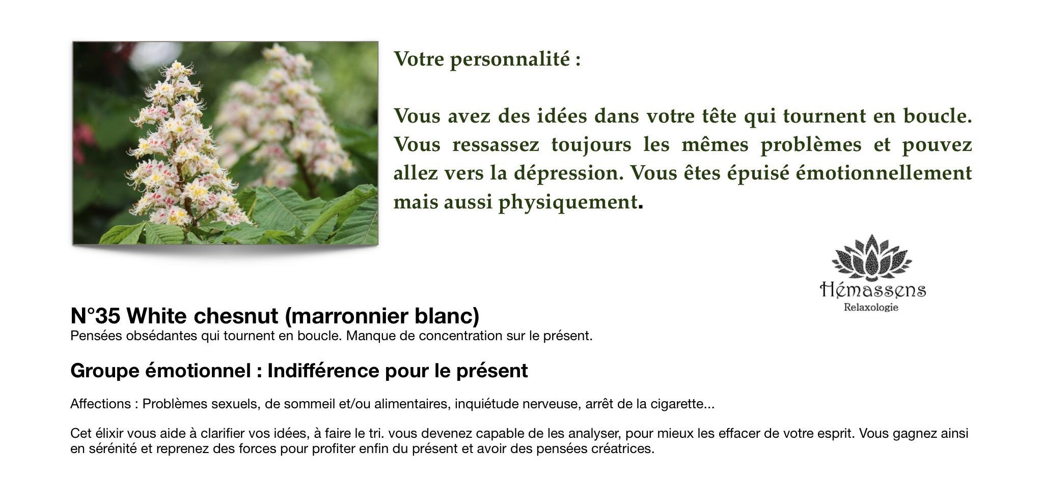 White Chesnut Fleur de Bach Hémassens Fameck